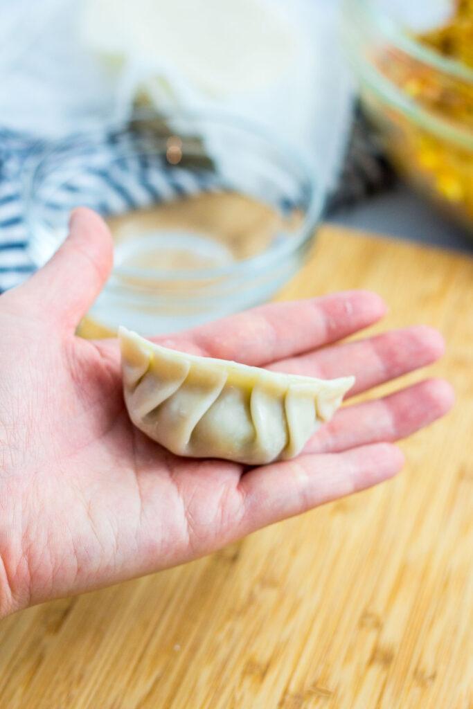 completely folded mandu/dumpling
